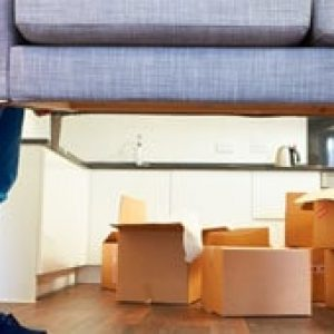 Standard Moving service in UAE - Helpire